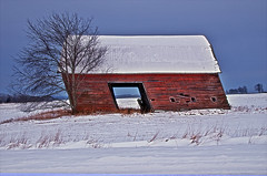 Winter barn (Bronica John) Tags: blue winter red sky white snow west field barn rural nikon colorful skies michigan country barns bluesky blueskies hdr redbarn redwhiteblue custer redbarns westmichigan d7000 hdrtist