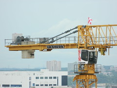 Liebherr 280EC-B 12 (cranefans4356) Tags: tower construction singapore flat crane top machinery lee ho hlm liebherr 12t