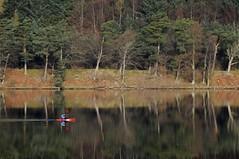 Canoeist, St Mary's Loch (Niall Corbet) Tags: lake reflection scotland canoe loch borders stmarysloch