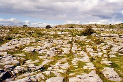 Irish landscapes - The Burren (La minina) Tags: ireland clare burren irlanda bellissimo karstlandscape gettyimagesirelandq12012 tavolatocalcareo ilpigrandealmondo