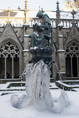 Freezing cold Holland (Joost Smulders) Tags: sculpture cold holland ice frozen utrecht bevroren nederland freezing olympus domkerk zuiko standbeeld beeld ijs statute koud fontein olympusom pandhof 24mmf2 zuiko24mmf2 vriezend sonynex