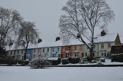 Arlington Terrace (sarah_presh) Tags: park trees winter snow cold february aldershot whits municipalgardens nikond5100 arlingtonterrace