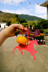 IMG_9980 (janoski006) Tags: china new city travel people urban horse orange tree leaves tangerine asian person asia good year chinese fortune hong kong destiny luck wishes lunar wishing
