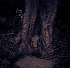 Night is Falling! (ReggieinHD) Tags: white black night canon garden toy amazon character sigma figurine danbo danboard