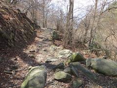 2016-032927 (bubbahop) Tags: switzerland hike locarno 2016 cardada europetrip33