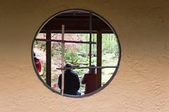 Clingendael 2016 (kruijffjes) Tags: netherlands nederland wassenaar thehague clingendael japansetuin hollanddenhaag