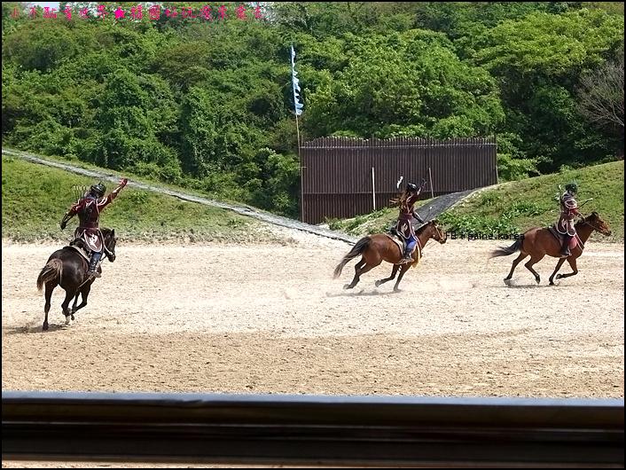 濟州The馬 park (23).JPG