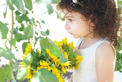 Gianna_0143 (Ciara*) Tags: girl kid toddler smiles cutie niece sunflower