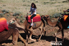 KS4A5273 (Actuality_Media) Tags: morocco maroc camels excursion studyabroad actualitymedia documentaryoutreach filmabroad