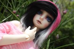 IMG_6753 (HarleyKai) Tags: msd kdf kiddelf summerhead14 kiddelfsummerhead14