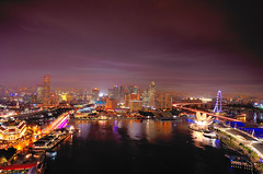 Marina Bay Area, Aerial View (Rebecca Ang) Tags: marinabaysands mbs marinabay marina skypark marinabaysandsskypark viewinggallery casino shopping singapore city cityscape architecture singaporeflyer flyer artsciencemuseum museum gardensbythebay financialdistrict esplanade esplanadetheatresbythebay bluehour blue nightphotography night tripod afterdark dark longexposure light colors sky aerial nikond7000 nikon d7000 hotel aerialphoto aerialshot level33 marinabayfinancialcentre marinabayfinancialcenter food lights wheel large