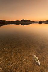 :-(( (Antonio Carrillo (Ancalop)) Tags: sunset espaa sun fish pez sol water canon landscape atardecer spain agua europa europe mark dam paisaje pantano murcia filter ii l 5d lopez antonio 1740mm f4 carrillo presa embalse argos gradual caravaca cehegin nd8 gnd8 ancalop