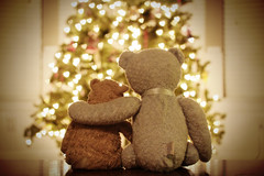 All You Need Is Love (stephmull) Tags: christmas friends love hearts bokeh bears hugs