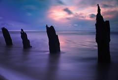 Sunset seascape (Graham - bell) Tags: longexposure sunset sea clouds still nikon atmosphere calm lightroom groynes nd400 walney d3000