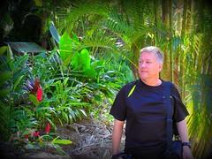 ~~WaimeaBotanicalGarden#11~~ (TravelsThruTheUniverse) Tags: tropicalplants tropicalflowers exoticgardens zengardens oahuhawaii tropicalgardens tropicalfoliage subtropicalgardens waimeavalleybotanicalgarden tropicallandscapes subtropicallandscapes waimeavalleyoahu waimeaparkhaleiwaoahu