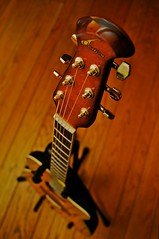 eh. but what do *you* think... (elmofoto) Tags: wood music playing turn neck stand nikon dof floor guitar body steel fav20 instrument acoustic strings knobs base hardwood strum ovation tighten d300 1000v fav10 ssfmlm elmofoto lorenzomontezemolo