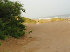 Arenas (jagar41_ Juan Antonio) Tags: arenas playas costasatlantica