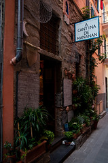 Shop in Corniglia, Italy (webeagle12) Tags: park vacation italy house shop nikon europe riviera italia village liguria national tiny terre mm nikkor cinque corniglia laspezia d90 1685 thefivelands