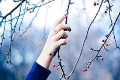 (tyreke.white) Tags: nikon d5000 50mm 18 bokeh focus light leak red orange blue purple hand fingernails tree