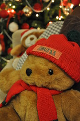 Dimitra's Xmas bear (dimitra_milaiou) Tags: life bear christmas xmas 2 two tree love home smile hat greek happy living nikon knitting december bokeh d pair decoration knit happiness athens greece gift decor 90 athina 2012 dimitra d90         milaiou