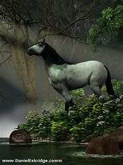 Wild Horse in the Forest (deskridge) Tags: wild horse animal forest wildlife mustang stallion feral shadowfax