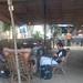 Totem at Goa