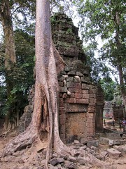 Angkor, Ta Prohm (Stewie1980) Tags: tree architecture canon temple ancient cambodge cambodia khmer ruin powershot angkor taprohm kampuchea sx130 sx130is canonpowershotsx130is