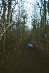 Woodland trails. (KatFrank) Tags: trees film photography woods mystical pathway