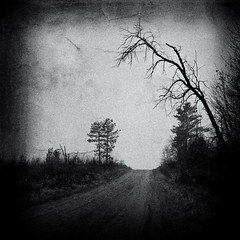 Promise (William Flowers) Tags: road trees mist mystery