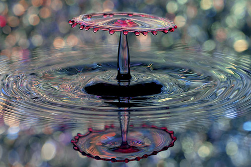 Water Bokeh / Corrie White
