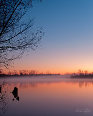 Misty Morning on the Red River: (7/2012) (bcbrasseaux) Tags: longexposure trees red sky mist nature water colors fog river landscape dawn twilight redriver