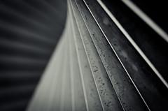 (koeb) Tags: abstract lines skulptur mainz mayence lebenskraft
