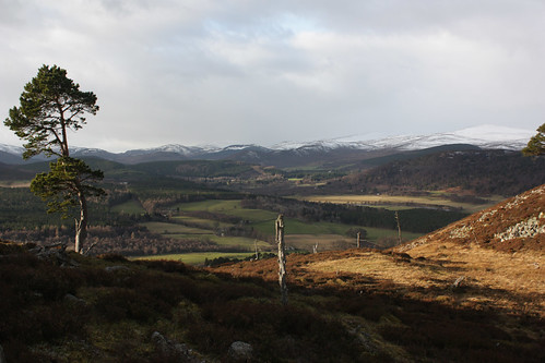 Looking over Balmoral and Royal Deeside