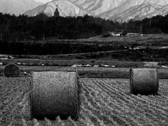 Hay Bales, Church and Mountain (Leichenwagen) Tags: mountain church olympus korea hay agriculture bales e30 bokina vivitar90mm25
