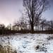 winter now - 13