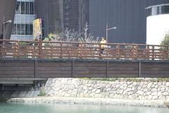 (quashlo) Tags: bridge bike bicycle kitakyushu   kokura   murasakiriver  kitakyushucity   kokurakitaward