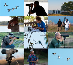 Paoay Lake Bird Census 2012 (B2Y4N) Tags: lake bird nature environment species paoay ilocosnorte birdcount birdcensus