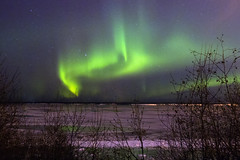 (bristolowl) Tags: green alaska canon lights powershot anchorage aurora northern borealis g12 nordly