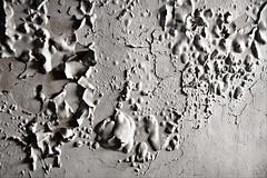 Desconchada (Pa Tricia) Tags: urban bw espaa texture abandoned wall pared nikon decay andalucia bn cal granada texturas abandonado d90 estropeado explored deteriorado