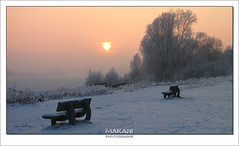 Benches at fogged far bank (Makani_Photography) Tags: winter sunset lake snow cold ice rose fog bench landscape scenery meer frost belgium foggy bank rime benches schulens lummen linkhout