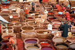 Fez's Tannery (Michele Fornaciari) Tags: travelling fez marocco fes reportage nationalgeographic