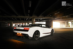 See The Light (anType) Tags: italy white sports car italian asia exotic malaysia kualalumpur lamborghini luxury coupe supercar v10 gallardo sportscar lambo superleggera worldcars lp5704 biancomonocerus