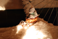 Night ride (KaterRina) Tags: bear snow canon toy ride hill 50mm14 oneobject365daysproject pukatukas