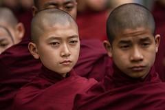 il piccolo monaco (mat56.) Tags: portrait children little bambini monk monaco monastery monks myanmar antonio ritratto monastero amarapura monaci piccoli birmania mahagandayon mat56 romei potd:country=it