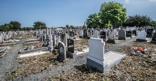 MOUNT JEROME CEMETERY AND CREMATORIUM IN HAROLD'S CROSS [SONY A7RM2 WITH VOIGTLANDER 15mm LENS]-117130