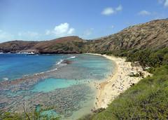 (Mitchell Lafrance) Tags: travel vacation usa holiday beach hawaii oahu pacificocean hanaumabay 2014