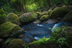 Magic Circle (@hipydeus) Tags: green water fairytale landscape bayern bavaria moss rocks stream magic landschaft enchanted magisch