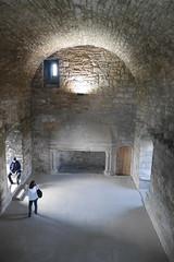 P9980588 (Patricia Cuni) Tags: castle scotland edinburgh escocia edimburgo castillo craigmillar