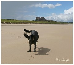 In the shadow of the castle. (Pops McKendry) Tags: bamburghcastle bamburghbeach poppymckendry