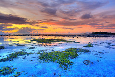 Sunset (matey_88 ( OFF )) Tags: sunset nikon maldives addu feydhoo d700 uniquemaldives mohamedmajid